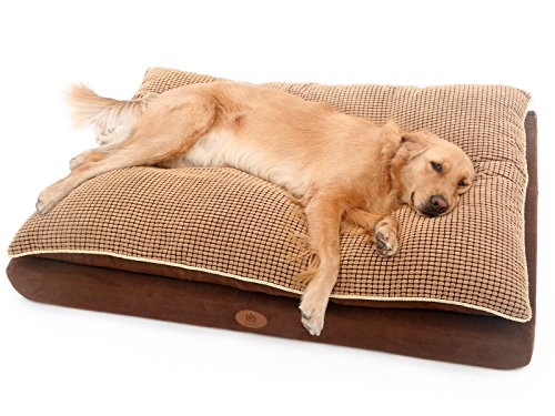 PLS Pet Paradise Orthopedic Pet Bed, Orthopedic Dog Bed, (Large 30Wx45L), Foam Dog Bed, Dog Beds for Large Dogs, Firm Medical Grade Foam, Plush Top, Easy-clean by PLS Pet