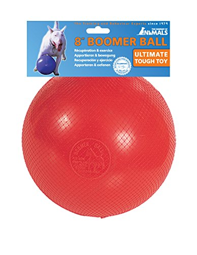 The Company of Animals - Boomer Ball - Durable and Indestructible Dog Toy - Large by The Company of Animals
