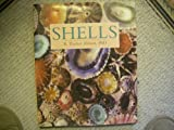 Shells, R. Tucker Abbott, 0517688506