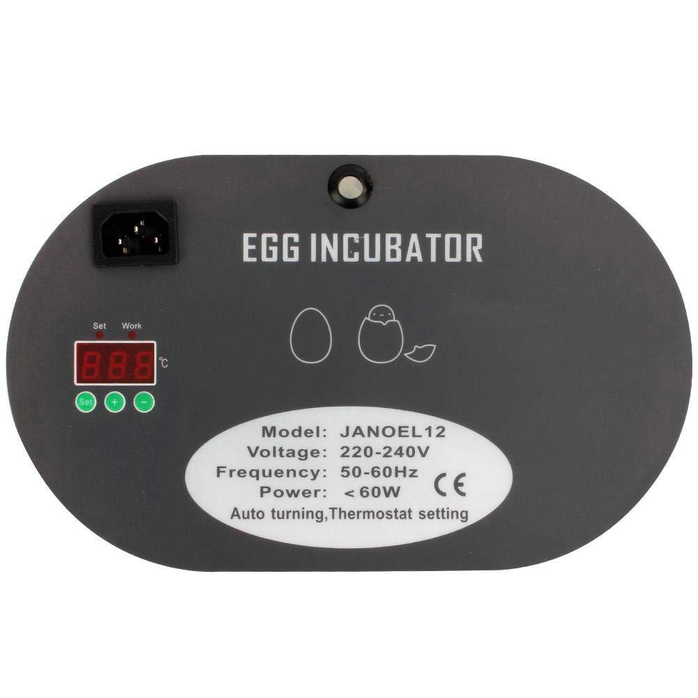 EBTOOLS Incubadora Automática De 12 Huevos Girando Manualmente los Huevos Control Digital de Temperatura: Amazon.es: Jardín