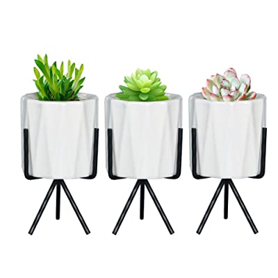 SQOWL 3 Piece White Ceramic Succulent Planter Pot Modern Cute Small Cactus Herb Flower Planters Set with Iron Stand Indoor : Garden & Outdoor