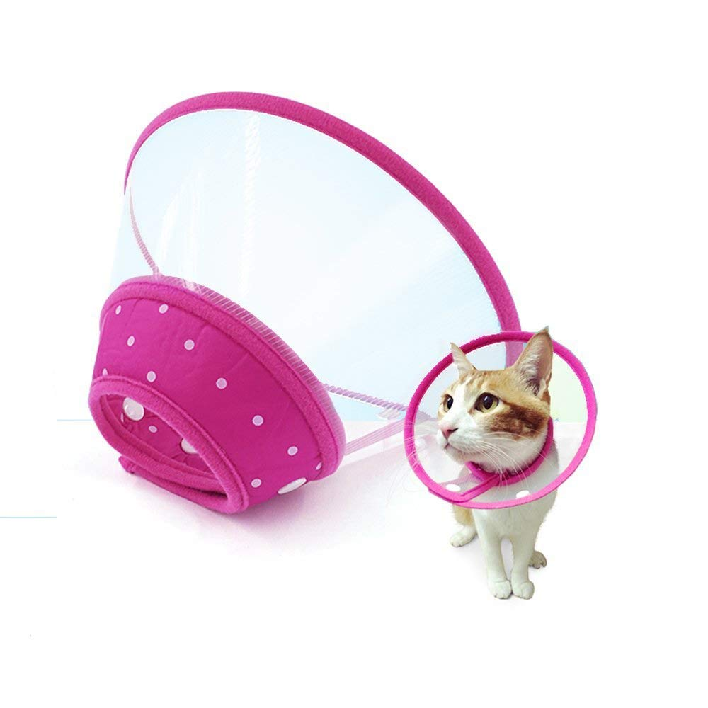 M Recovery Collar Cone for Dogs and Cats Clear Padded Elizabethan Collar with Breathable Soft Edge by IN HAND