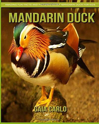 Mandarin Duck: Amazing Fun Facts and Pictures about Mandarin Duck ...