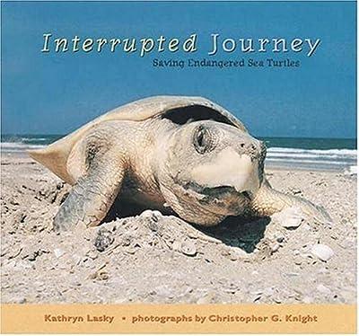 Interrupted Journey: Saving Endangered Sea Turtles