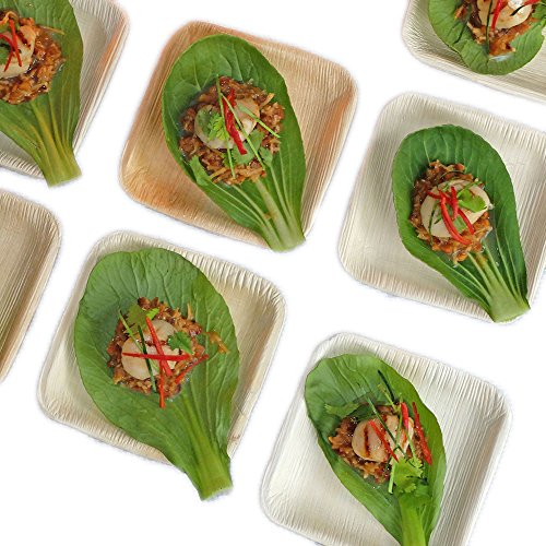 Thynk Palm Leaf Plates - 4.5 Inch Square Mini Tasting Plates - All Natural 100% Biodegradable and Compostable - Disposable Dinnerware - Perfect Party Plates - 20 Count]()