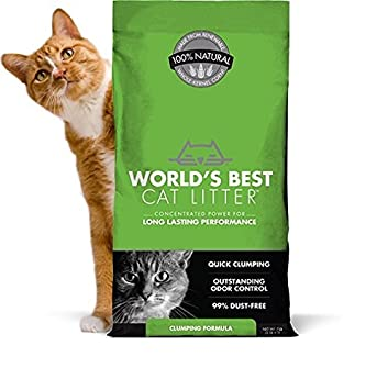 image cat litter. worldu0027s best cat litter 391032 clumping litter formula 28pound image cat