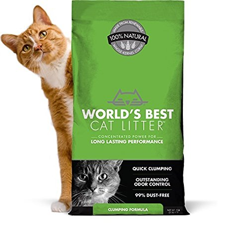 5150BSBivlL - World's Best Cat Litter, Clumping Litter Formula, 28-Pounds