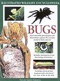 The Big Bug Book, Barbara Taylor and Jen Green, 0754811492