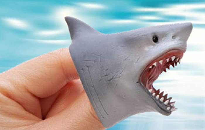 The Best Shark Tooth Prime Bluetooth