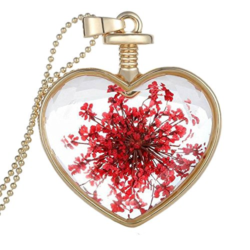 HuntGold Charming Transparent Love Heart Glass Bottle Dried Flower Crystal Pendant Necklace (Charming Heart)