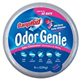 DampRid FG69H Odor Genie Odor Eliminator in Little game Berry, 8-Ounce