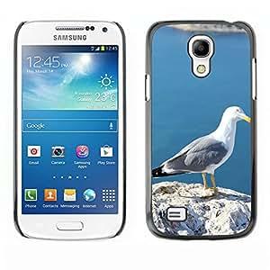GoGoMobile Etui Housse Coque de Protection Cover Rigide pour // M00124557 Gaviota Ave Aves Calpe Alicante // Samsung Galaxy S4 Mini i9190