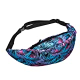 Fanny Pack, Women Teens Fashion Travel Sports Outdoor Belt Waist Bag Running Purse Pouch (C)