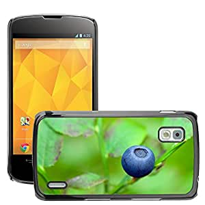 Etui Housse Coque de Protection Cover Rigide pour // M00153088 Arándano azul baya comer comida // LG Nexus 4 E960