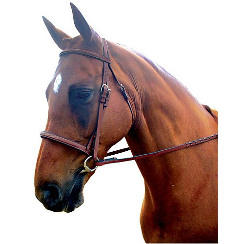 Padded Bridle Raised (Kincade Raised Padded Fancy Stitched Cob Bridle, Brown)