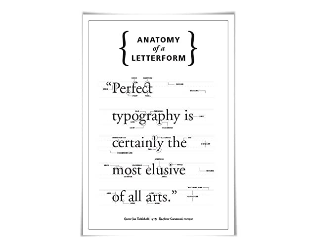 Amazon Anatomy Of A Letterform 60 Colours 3 Sizes Graphic