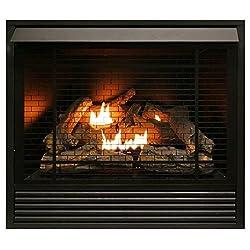 Duluth Forge Dual Fuel Ventless Fireplace Insert - 32,000 BTU, Remote Control FDI32R-A by ProCom Heating Inc