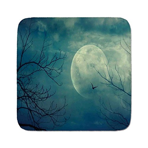 Cozy Seat Protector Pads Cushion Area Rug,Horror House Decor,Halloween with Full Moon in Sky and Dead Tree Branches Evil Haunted Forest,Blue,Easy to Use on Any Surface -