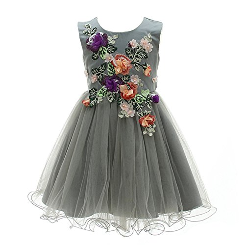 Gray Girls Dresses Girls Princess Wedding Special Occasion Dress