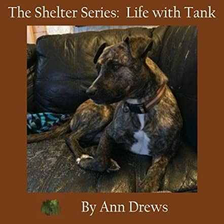 The Shelter Series