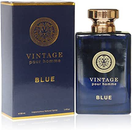 VINTAGE BLUE, , Eau de Parfum Spray for Men, Mediterranean Freshness, Daytime and Casual Use, Perfect Gift, for all Skin Types,a Classic Bottle, 3.4 Fl Oz …