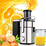 Juice Extractor Fruit and Vegetable Juicer, 1000 Watt 80MM Wide Mouth Whole Fruit Masticating Juicer, 2 Speed Setting Stainless Steel