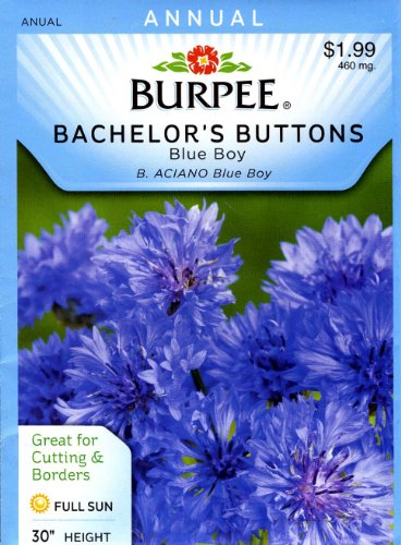 Burpee 40742 Bachelor's Buttons Blue Boy Seed Packet