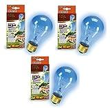 Zilla Incandescent Bulb, Day Blue Light and Heat, 100 Watt (3 Pack)