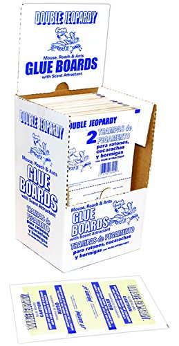 - JT Eaton 182B Double Jeopardy Glue Board with Release Paper, 5-1/4