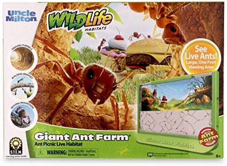 Anthillshop.es- Ameisenfarm Formicarium for LIVE Ants Kit 15x15 Acryl nat/ürliche Galerie New Educational Ant Farm Ameisen mit K/önigin Free
