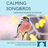 Calming Songbirds - Nature Sounds Recording Of Bird Calls - For Meditation, Relaxation and Creating a Soothing