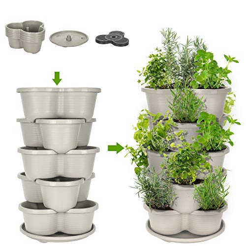 Amazing Creation Stackable Planter Vertical Garden for Growing Strawberries, Herbs, Flowers, Vegetables and Succulents…