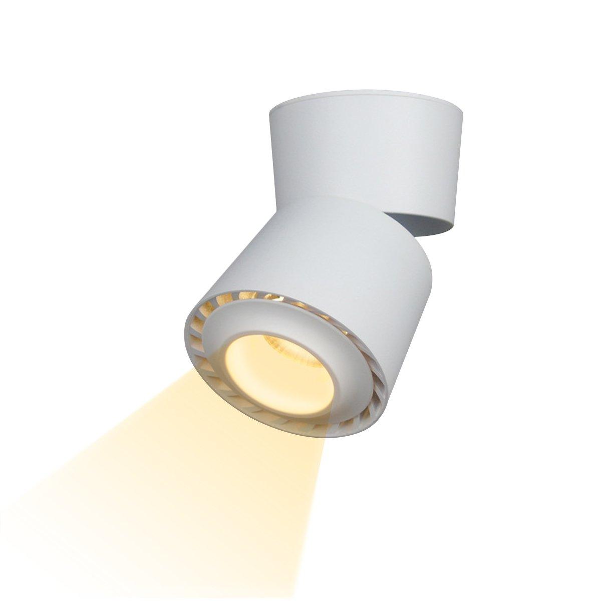 Dslg Indoor 12W LED Spotlight 360°Adjustable Ceiling Downlight/Surface Mounted COB Lighting LED/9X13CM/Aluminum Wall Lamp or Spot Light (White-3000k)