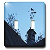 3dRose TDSwhite – Miscellaneous Photography - Weather Vane Horse North South East West Wind Vane Weathercock - Light Switch Covers - double toggle switch (lsp_285448_2)