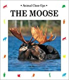 The Moose, Christian Harvard, 1570915059