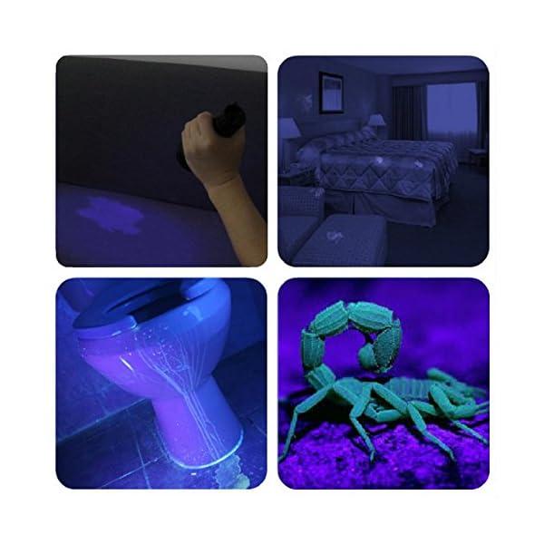 Black Light UV Flashlight UV Light,Vansky Blacklight 12 LED Urine Detector For Dog/Cat/Pet Urine & Dry Stains and Bed Bug On Carpets/Rugs/Floor,Matching with Pet Odor Eliminator 5