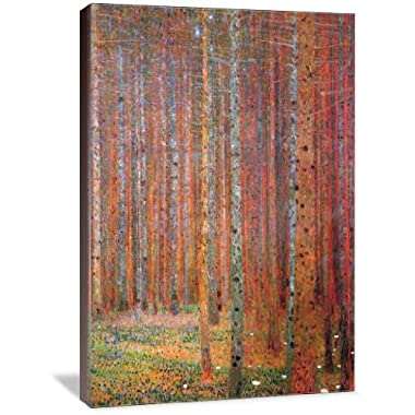 Tannenwald 24  x 36  Gallery Wrapped Canvas Wall Art