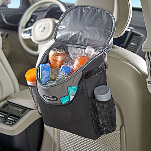 Buy small cooler for car