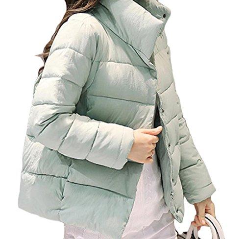 静める乙女豊富Nicellyer 女性の純粋な色を濃くする暖かい冬のベストのダウンジャケット