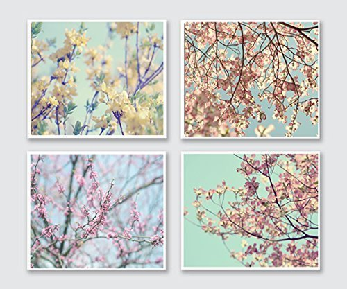 Spring Photography, Floral Branches Flowering Tree