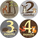 Woodland Critters Monthly Baby Bodysuit Stickers