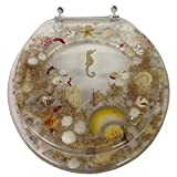 SEASHELL AND SEAHORSE RESIN TOILET SEAT - STANDARD SIZE, CLEAR