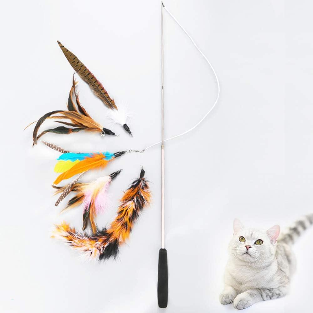 WishLotus 6 juguetes para gatos interactivos para gatos, 3 niveles, retráctiles para cañas de pescar gatos, varita de plumas de gato, con cascabel y 5 cabezas de repuesto para gato: Amazon.es: Productos