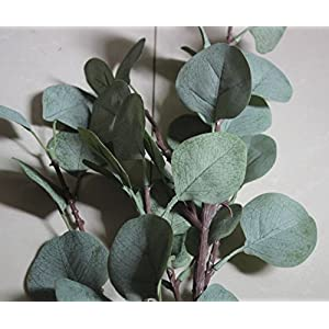 ZHIIHA 3 pcs Artificial Eucalyptus Garland Long Silver Dollar Leaves Foliage Plants Greenery Fake Plastic Branches Greens Bushes 4