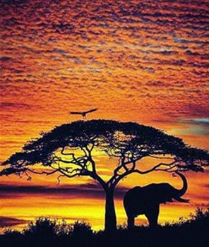 African Skies Elephant Scenic Travel Nature Poster 24 x 36 i