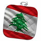3dRose Carsten Reisinger - Illustrations - Flag of Lebanon waving in the wind - 8x8 Potholder (phl_177552_1)