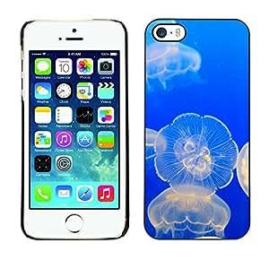KOKO CASE / Apple Iphone 5 / 5S / océano resplandeciente medusas naturaleza mar azul / Delgado Negro Plástico caso cubierta Shell Armor Funda Case Cover