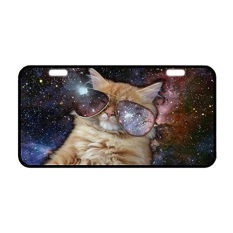 """Custom cute espacio gato desgaste gafas de sol metal placa de licencia para coche 11.8 """""""