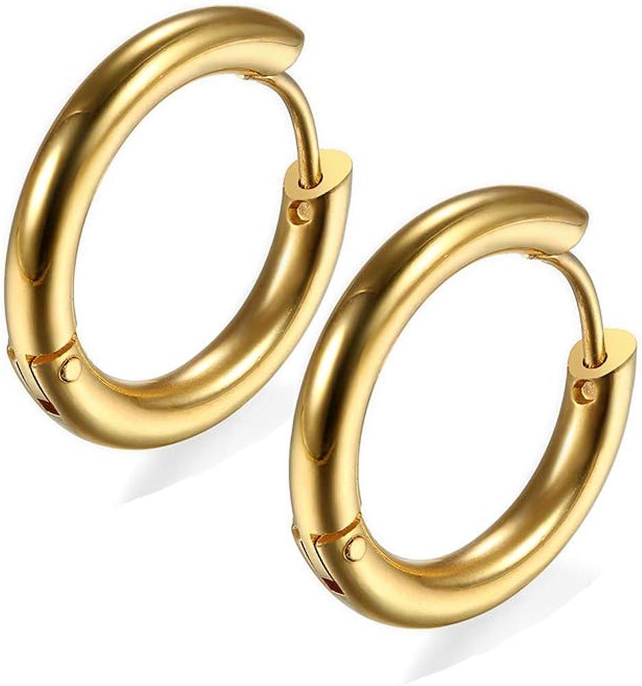 20G Small Hoop Earrings 18K IPG 316L Surgical Stainless Steel 6mm/8mm/10mm Unisex Thinner Hoop Nose Ring Snug Rook Lobes Hypoallergenic Sleeper Earrings