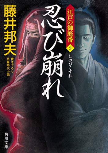 忍び崩れ 江戸の御庭番3 (角川文庫)